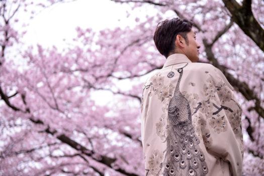 鳥取でウェディングの前撮りするなら桜のシーズンがおすすめ