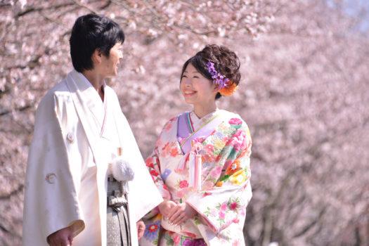 鳥取でウェディングの前撮りするなら桜のシーズンで